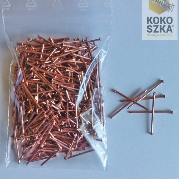 Gwoździe do odstępników 1,2×20 ocynkowane (0,10kg)